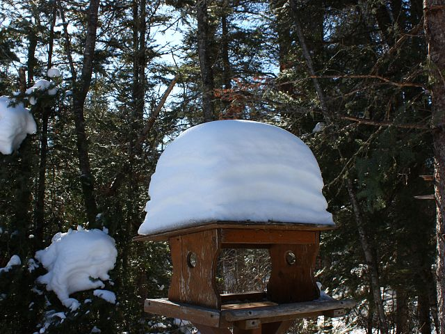 Quite the accumulation of snow this season.