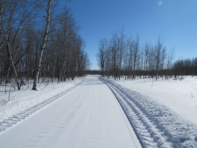 Northern Lites trail just groomed