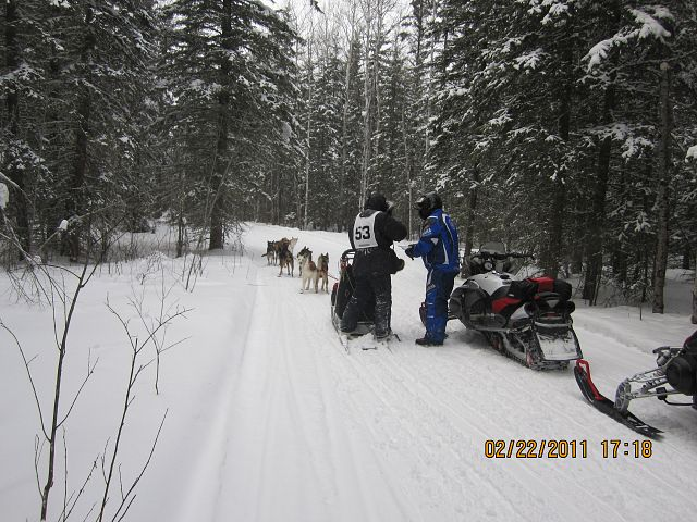 Giving directions.  You never know what you'll see on a Saskatchewan trail! This was taken north of Emma Lake in the Lakeland area during our annual snowmobile trip, just happened to be at the same time as a dog sled race.