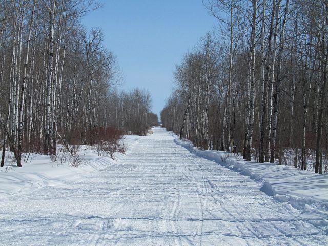 Trails still in great shape