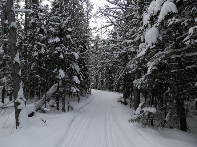 Trails north of Moosehorn