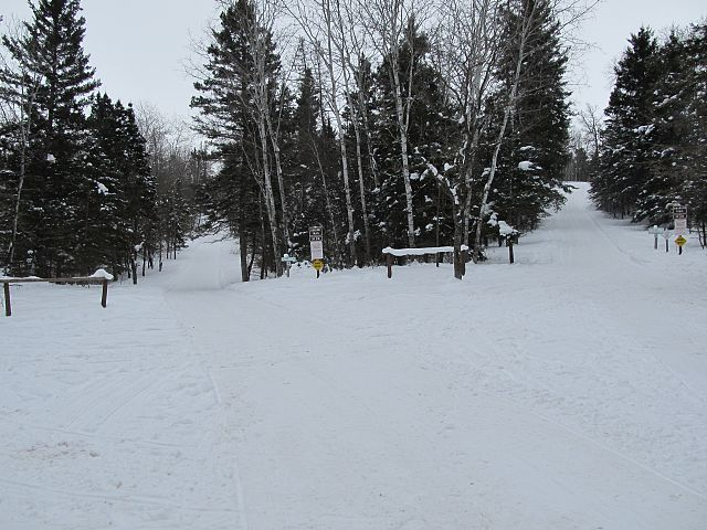 Trails in the park