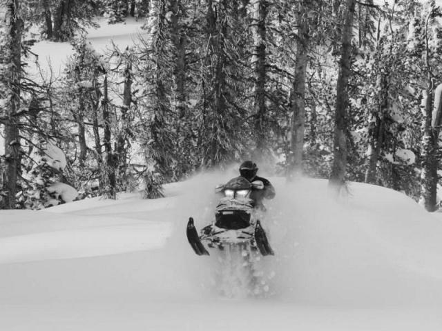 Rider: Dave Schell