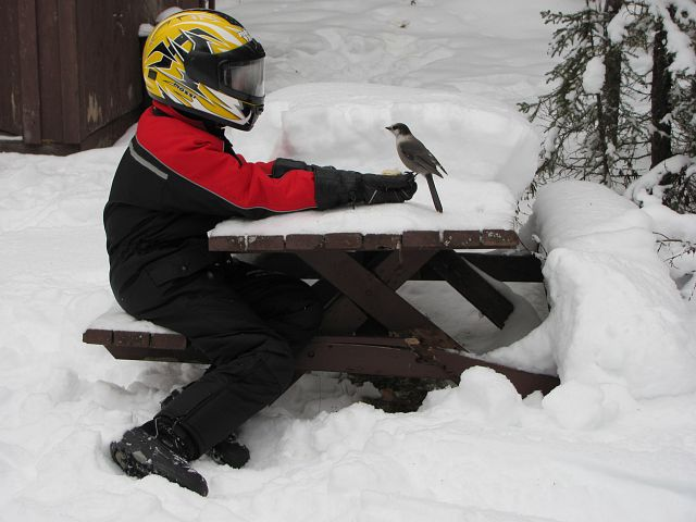 I make friends snowmobiling
