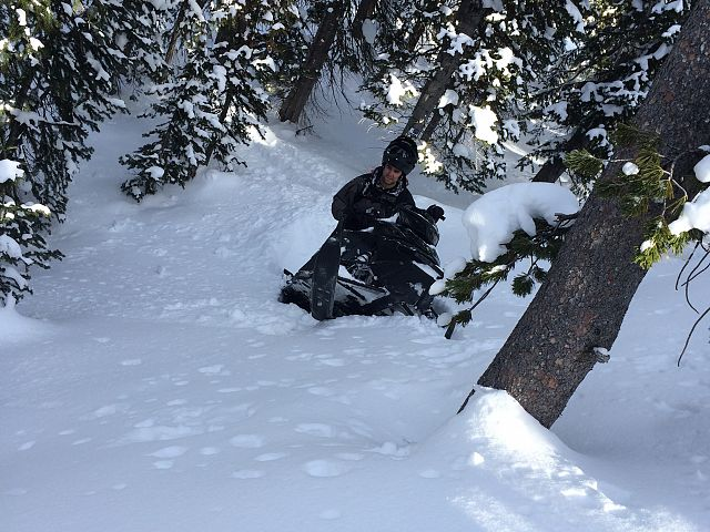 yup, found some snow
