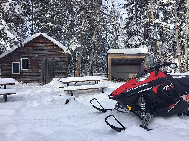 Enjoying the fresh snowfall!