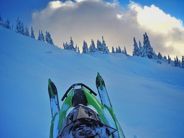 #mountaincatmonday