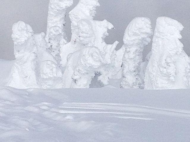 Seven dwarfs  in snow