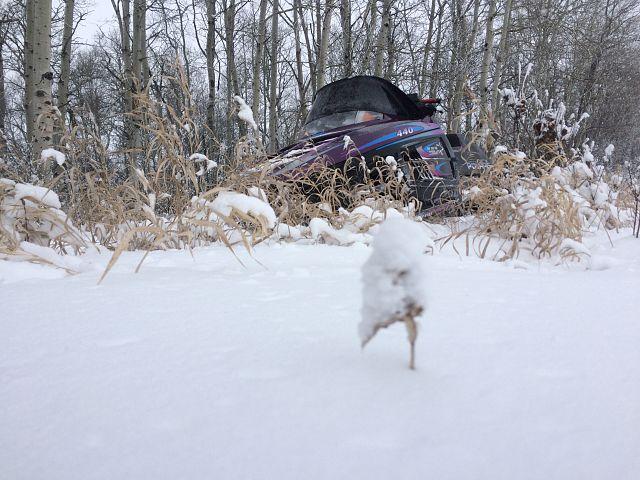 The fresh snow from the Saskatchewan blizzard