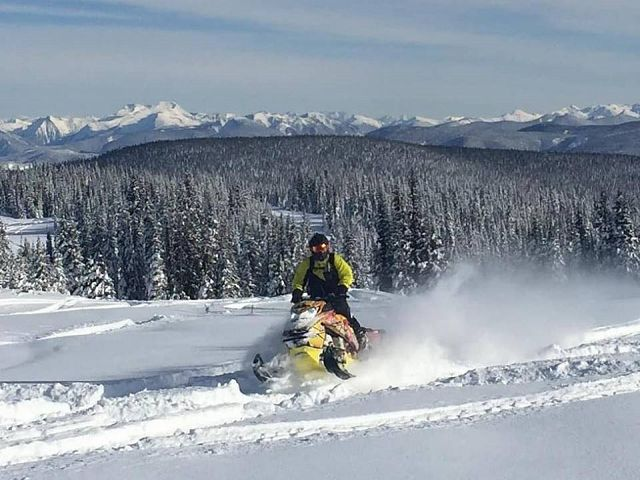 Rippin the Pines
