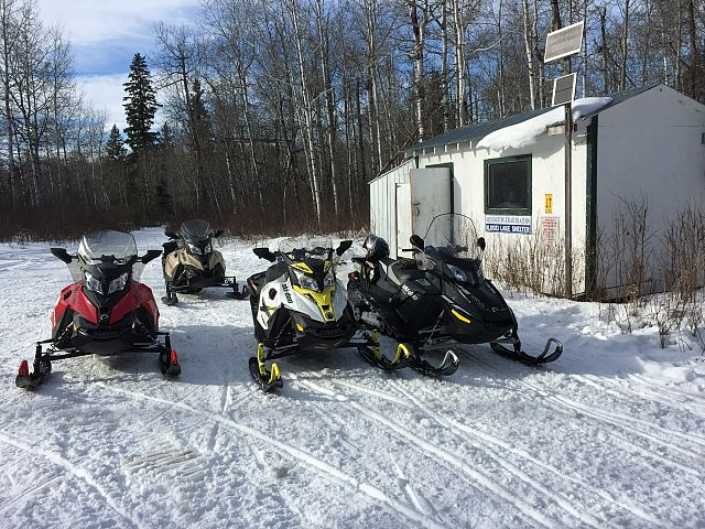 Life is better with friends and sleds