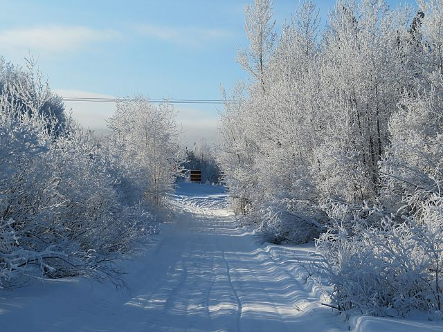 Trail 208a , adjacent Harding Road