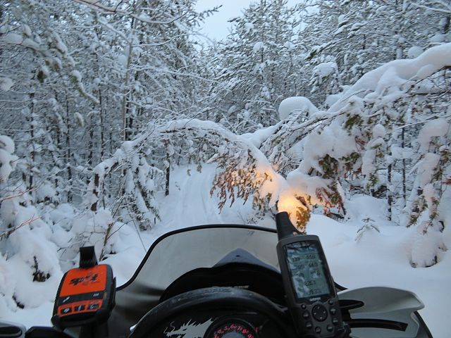 Side trail off 208 L