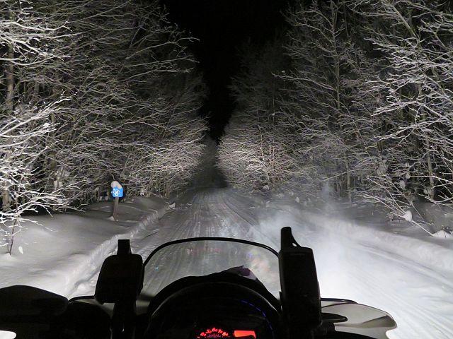 Trail 208b Night Ride