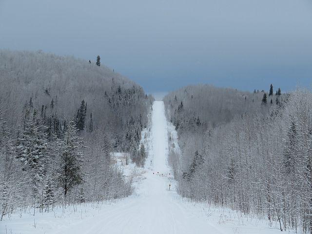 Trail 208L north
