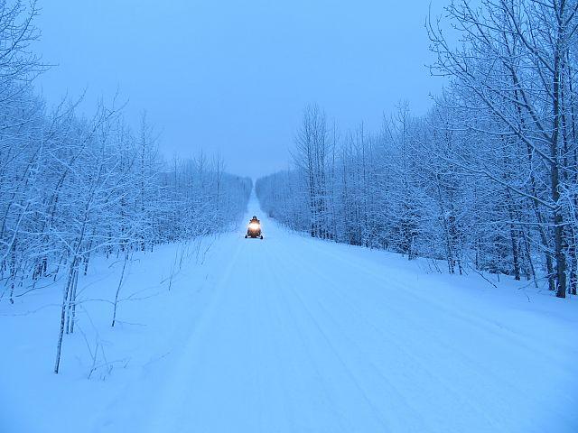 Trail 208 L