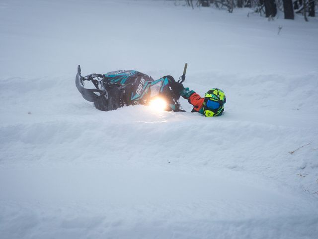 Tyson enjoying the deep snow.
