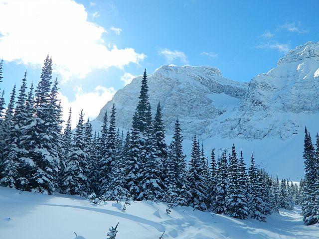 Fresh snow on trails