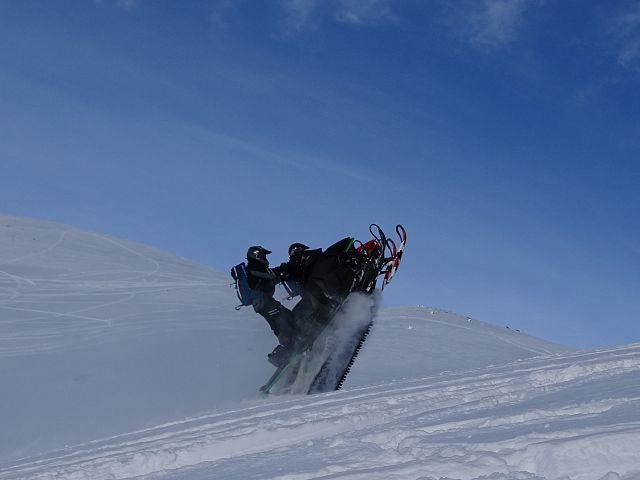 Synchronized sledding