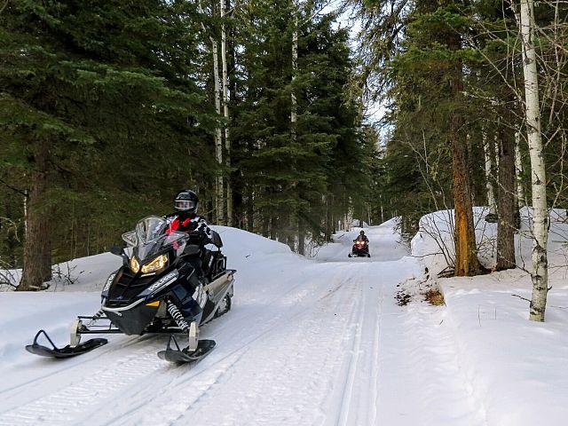 Trail 208 C