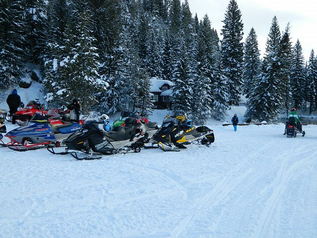 lots of sleds