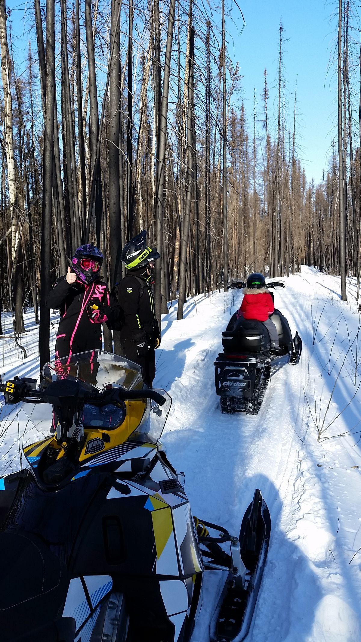 Sledding through the burnt boreal forest near Weyakwin Lake